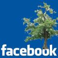 Albero Facebook
